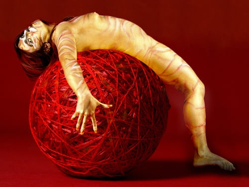 Diana Tiger on Yarn Ball
